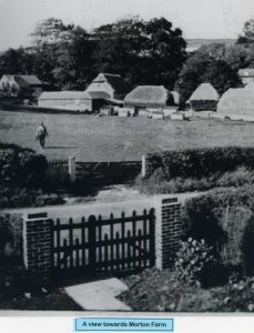 A view of Morton Farm