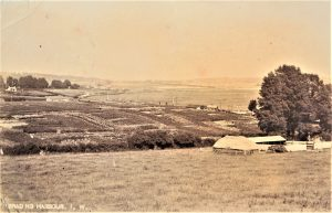Brading. View from New Road towards the Railway Station, allotments and the Cement Works. Postcard. C. 1900.