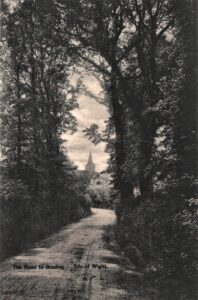 "Postcard ""The road to Brading"". SB 025."